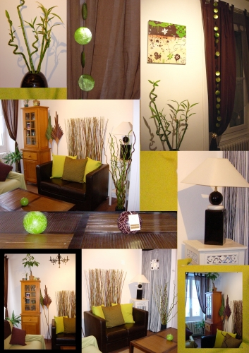 montage photo deco salon .jpg